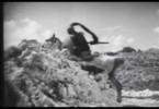 Thumbnail Don Quixote (1933)