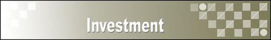 Thumbnail Investment Adsense Web Pages