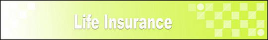 Thumbnail Life Insurance Adsense Web Pages