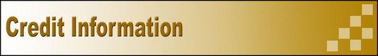 Thumbnail Credit Information Adsense Web Pages